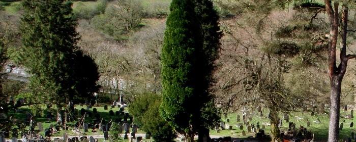O coroană pentru coana Elisabeta sau viața împletită cu moartea