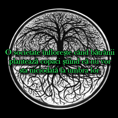 O societate infloreste cand batranii planteaza copaci stiind ca nu vor sta niciodata la umbra lor