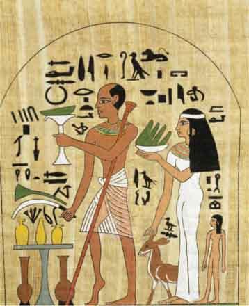 egipt medic