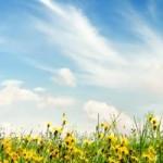 Baladă Sfântului Soare